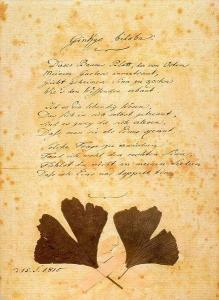 Ein Gedicht von Goethe  Haus in Bewegung