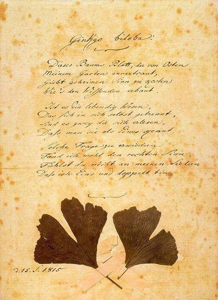 Ein Gedicht von Goethe
