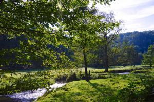 Landschaft im Naafbachtal| Haus in Bewegung